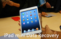 deleted file recovery from iPad Mini
